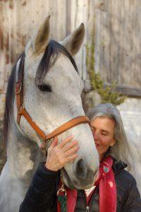 Horses as valued Teachers - Horse Spirit Connections